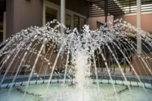 Fountains - Regis The Gap
