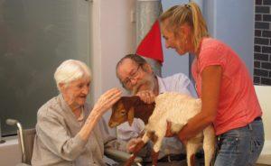 Aged Care Sandgate Queensland