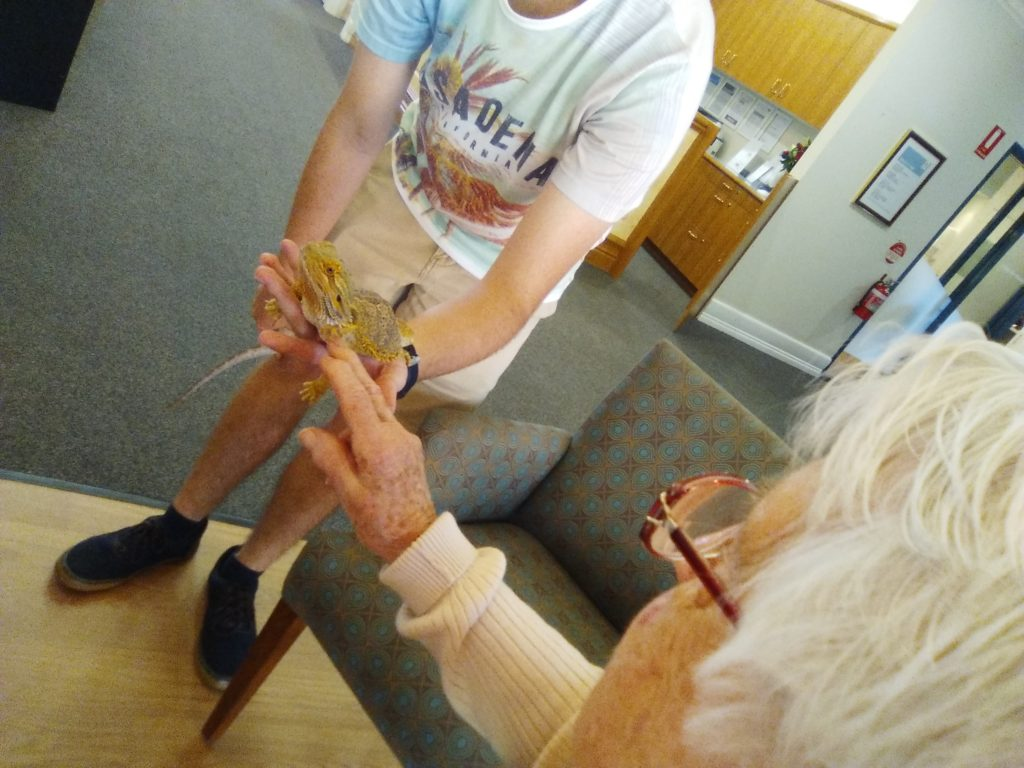 Pet Therapy in Aged Care Queensland