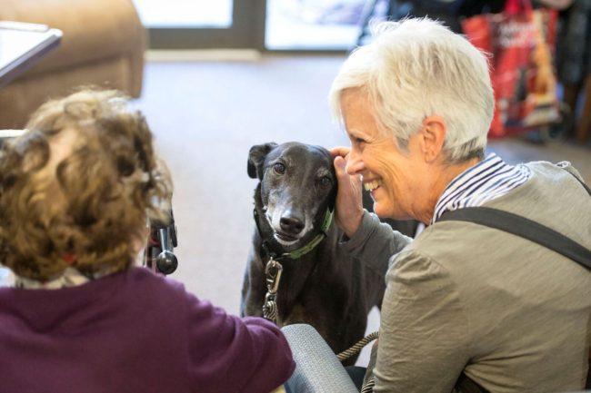 https://www.regis.com.au/site/wp-content/uploads/2017/10/Greyhound-Nursing-Home-e1556489963993.jpeg