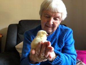 Aged Care Cranbourne