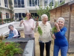 Aged care elermore vale